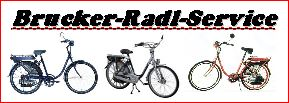 BRUCKER-RADL-SERVICE-Logo